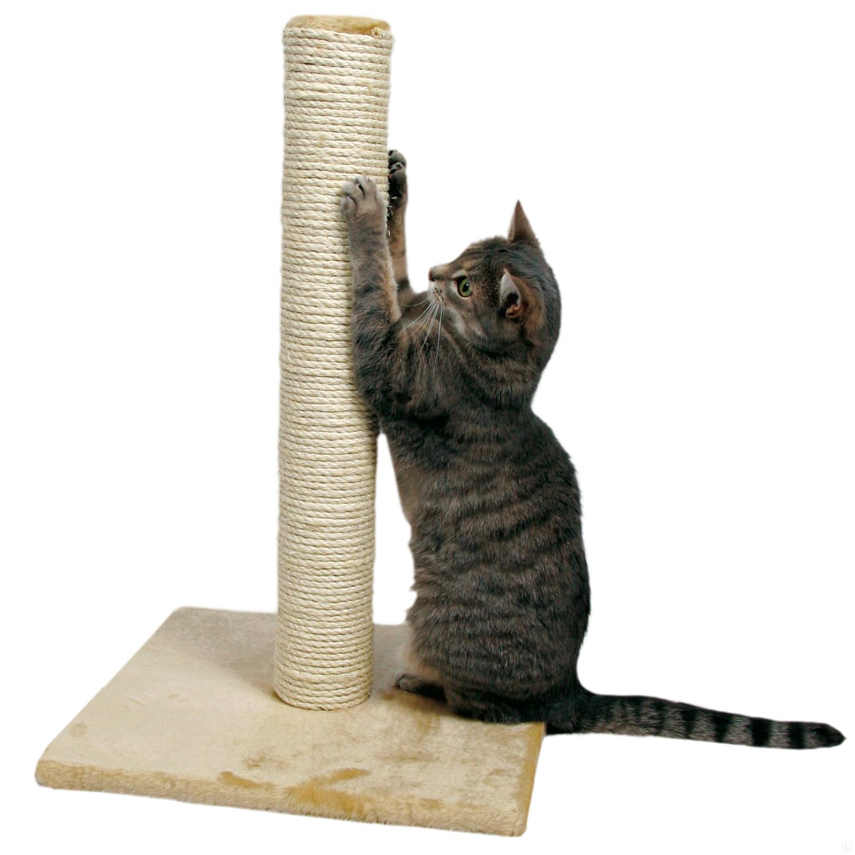 Ногти точилка для кошки своими руками
